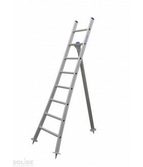 Solide plukladder 6 sporten Ladders enkel