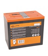 Gallagher Powerpack batterij (9V, 160Ah)